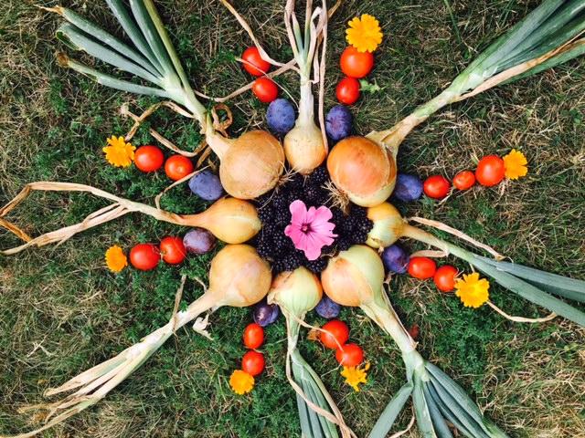 Früchte Kunst